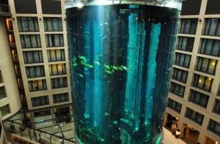 AquaDom-ascensore-berlino2