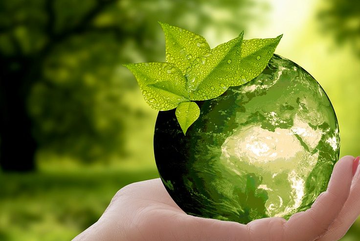 Ascensori ecologici: cosa vuol dire avere eco-efficienza